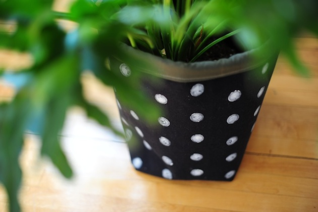 plantholder (1)