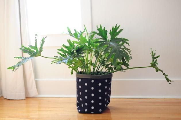 plantholder (2)